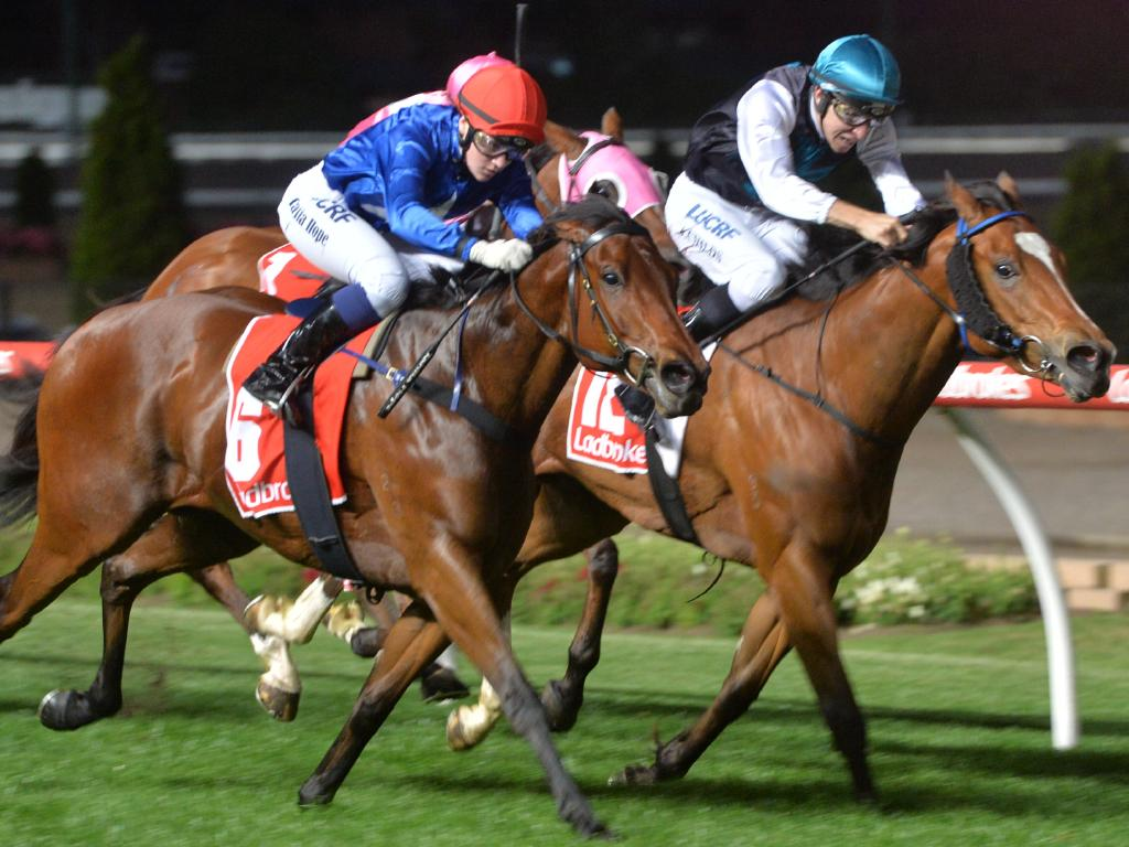 Showpero (inside) is narrowly beaten by Invincible Al at Moonee Valley back in November 2017. Jamie Kah sticks with the mare this weekend. Picture: Ross Holburt/Getty Images