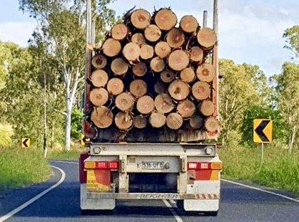 LOG TRUCK DRIVER: Want to try out being a log truck driver? Apply for this job.