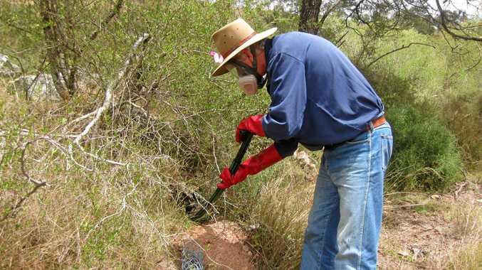 FUMIGATED: Paul Morrish fumigating rabbit warrens as part of pest control measures.