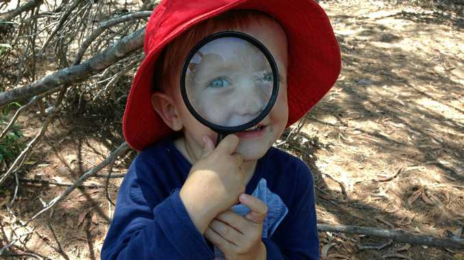 Bushwalking with your kids