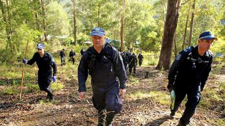 Police spread out to search for evidence relating to the disappearance of William Tyrrell. Picture: Nathan Edwards