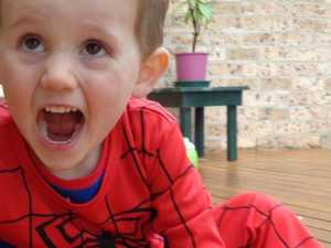 Police search on William Tyrrell's birthday