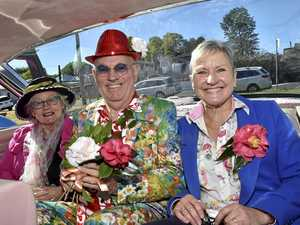 Camellia historian uncovers stories at flower show