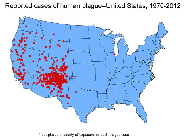 The last urban plague epidemic in the US happened in Los Angeles in 1924.  Picture: Supplied