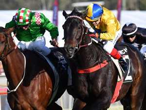 Reliable Tradesman delivers under pressure in Ipswich Cup