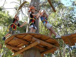 Coffs' treetop attraction has opened