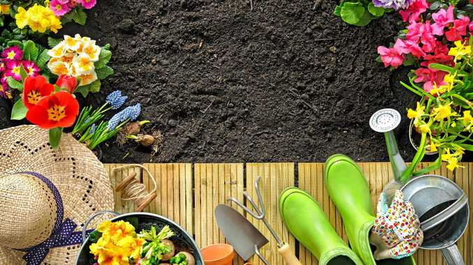 Top tips for gardening in winter months