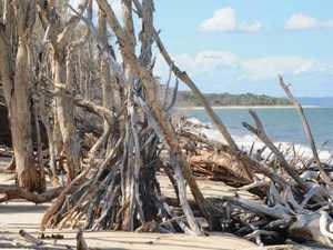 Mystery behind Bribie beach 'huts'