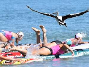 Masters Surf Carnival at Torquay - start of the