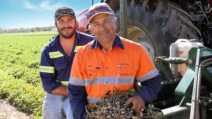 Bega director meets with local growers