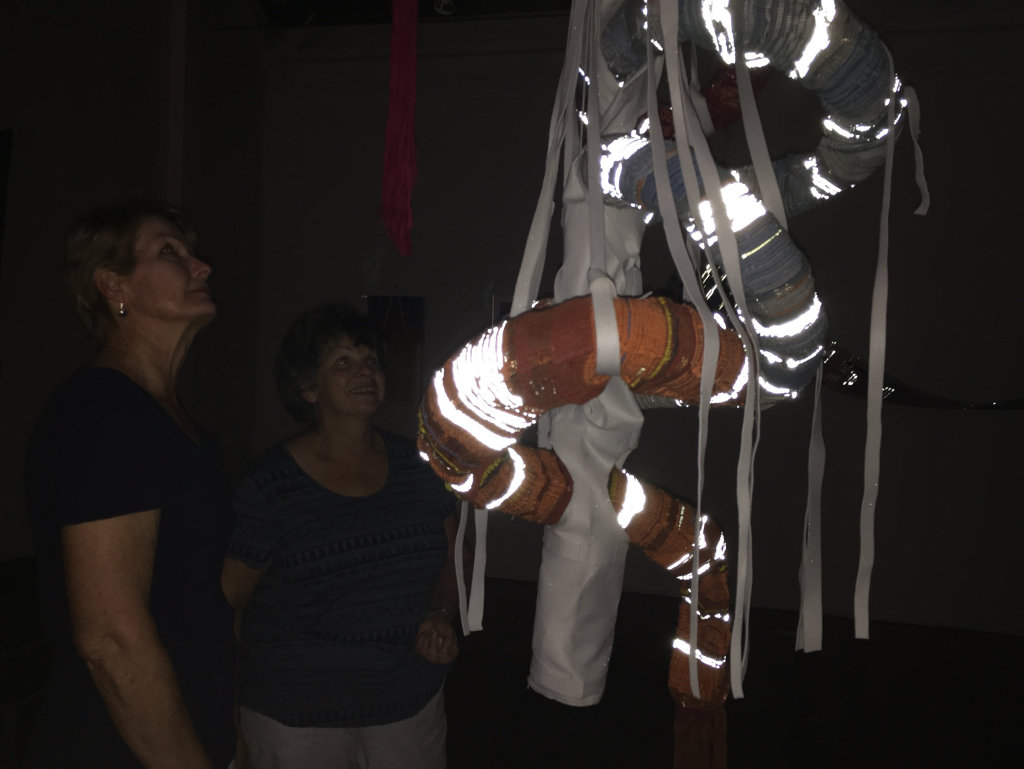 Maria Turmine and Sue Thurlow admire the new exhibit at Gatakers Artspace in Maryborough.