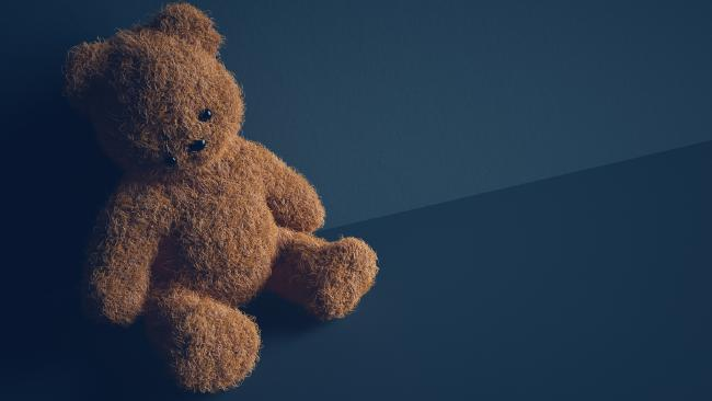 Australia's Health 2018 report, released on Wednesday, showed that half of women who have had children in their care while suffering domestic violence from a current partner said the kids had heard or seen the violence.