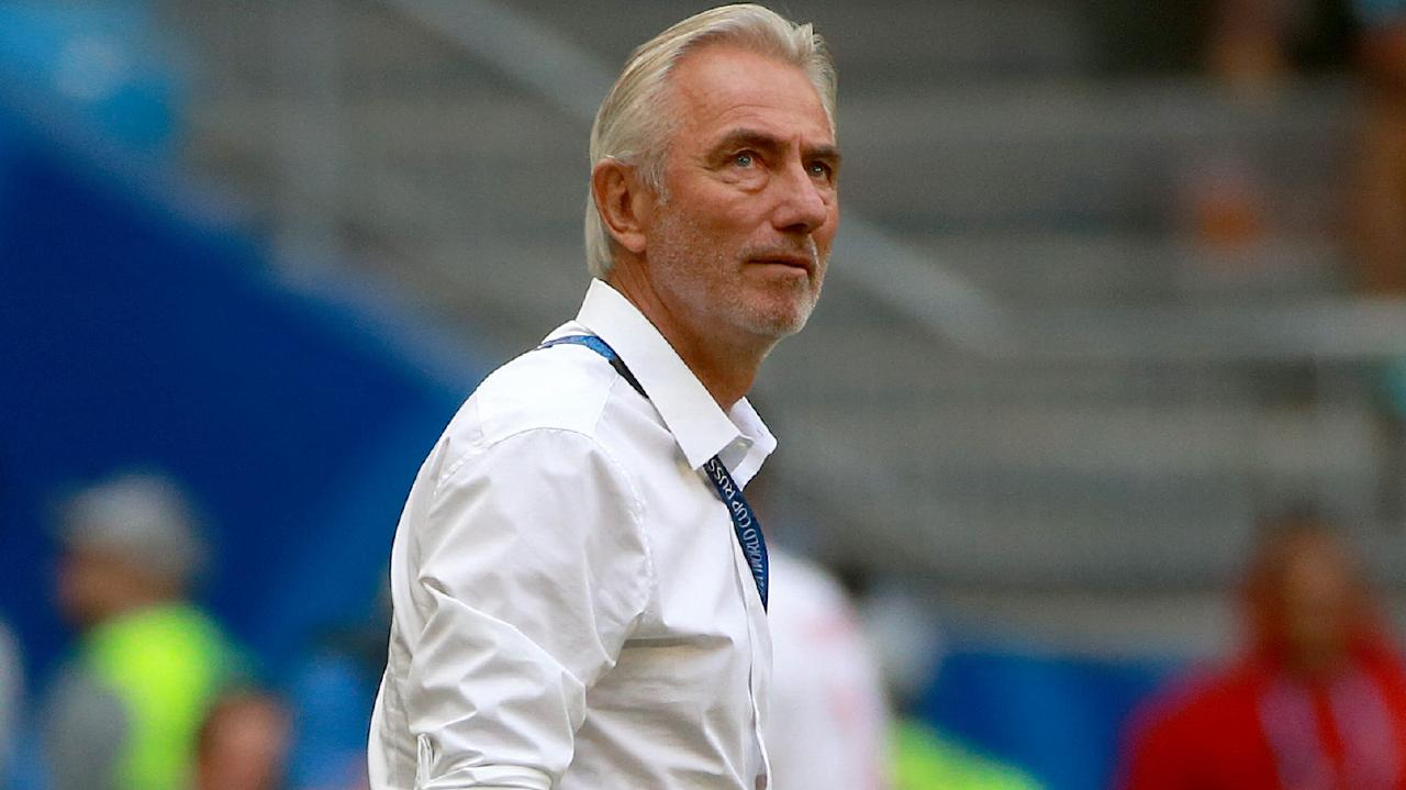 Bert van Marwijk will step down after the World Cup. Picture: Toby Zerna