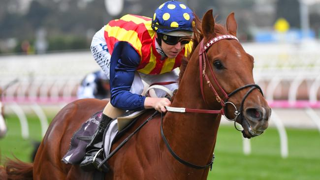 Damian Lane guides Nature Strip to an easy win at Flemington on Saturday. Picture: Vince Caligiuri/Getty Images