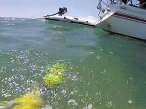 Boaties injured on Sunshine Coast waters