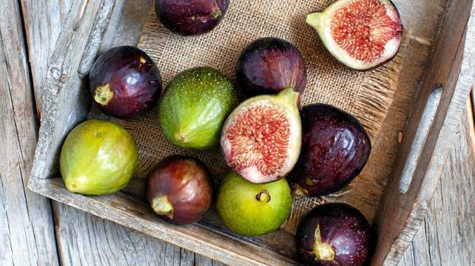 Green and purple figs are easy to grow in your backyard.