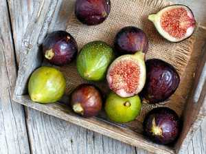 Fabulous figs a hardy choice for your garden