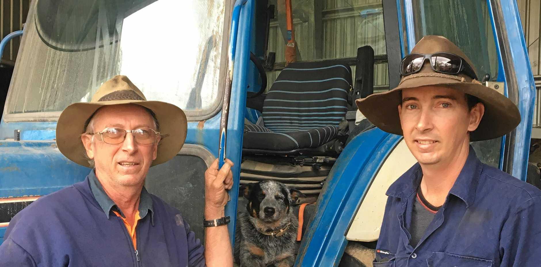 POSITIVE: Ross, Mac and Byron Nicholson at their Nicholsons Road farm, Benholme.