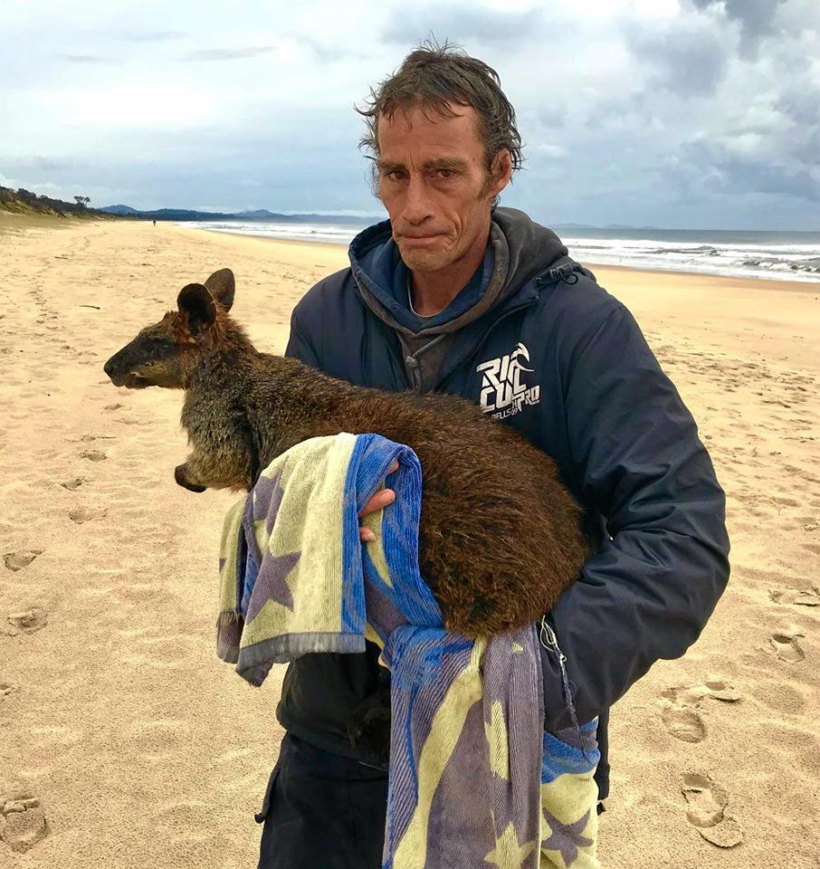 David Hancock shared these photos on social media of two men who rescued a wallaby from the water at Tyagarah.