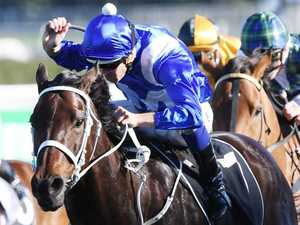 Winx short odds to break record