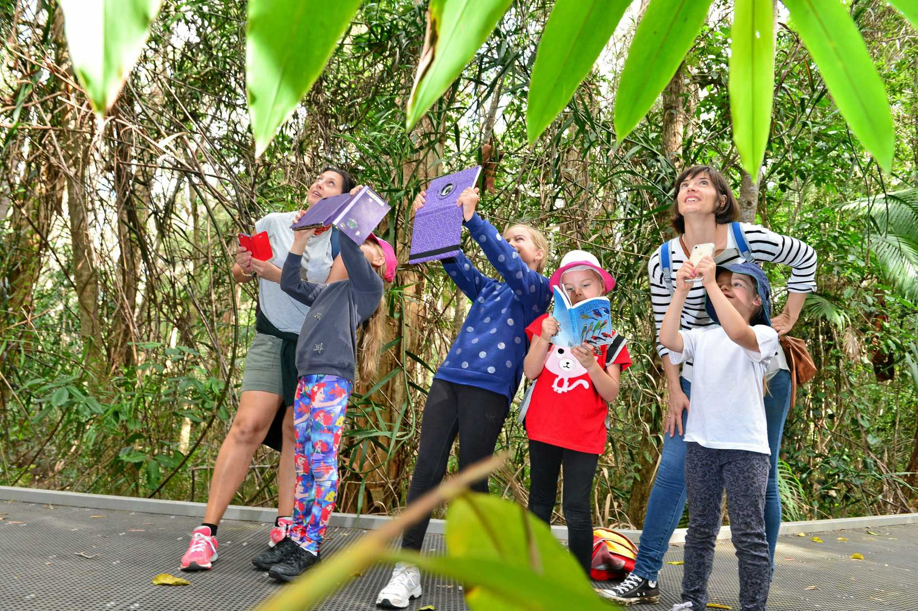 EDUCATIONAL ADVENTURE: Eugenia and Maddison Morris with Nina, Eliza, Natalie and Olive Dalton at Maroochy Wetlands Sanctuary using their apps to interact with the environment in the lead-up to the free Excox-Hunt Adventure these school holidays.