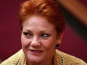 Hanson pushes for immigration plebiscite
