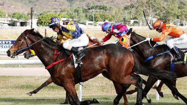 Lady Skills will run in Thursday's North Queensland Cup at Cluden Park. Picture: Shae K Photography