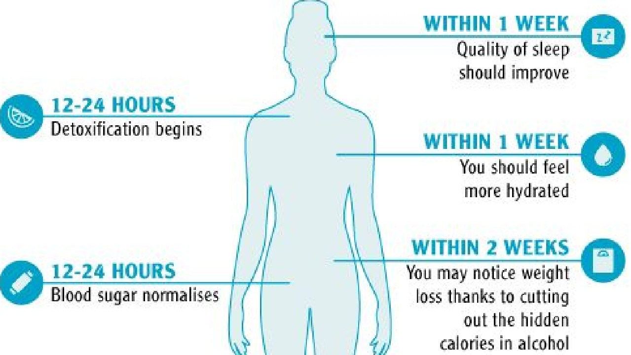 What happens to your body when you stop drinking. Picture: Dry July