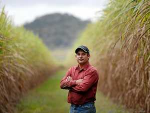 Budget another kick in the guts: farmer