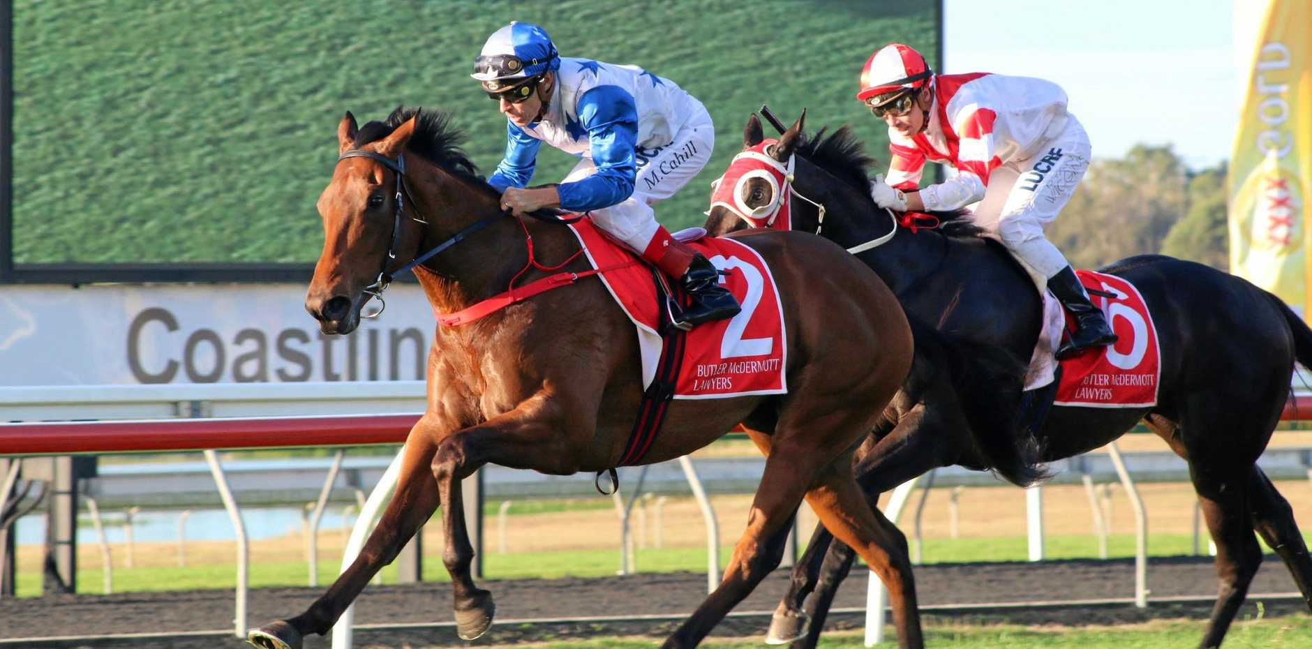 Jockey Michael Cahill pushes Bostonian over the line first in the Sunshine Coast Guineas at the Sunshine Coast Turf Club on Saturday, June 30. Local trainer Garnett Taylor's Bold Assassin crossed in second place