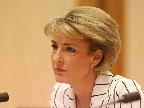 Senator Michaelia Cash says the system is designed to make the process of finding a job easier. Picture: Kym Smith