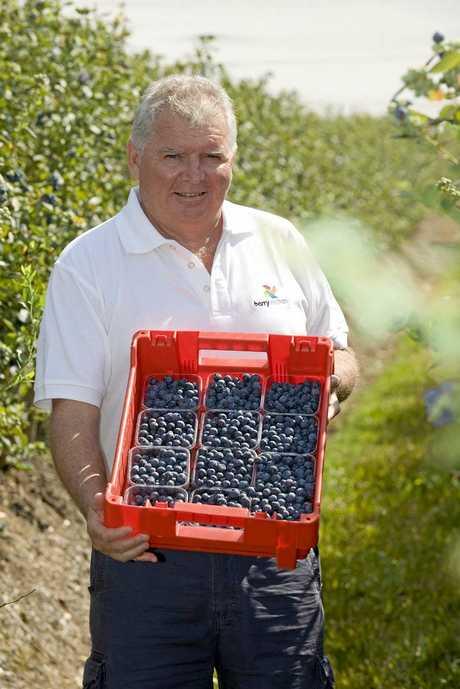Head of the International Blueberry Organisation Peter McPherson of Costa.