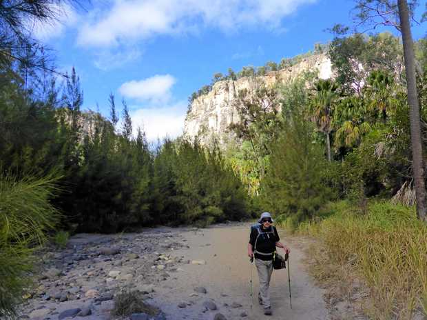 STEPPING OUT: Gold Coast Bushwalkers Club president Brenton Prescott explores his world on foot.