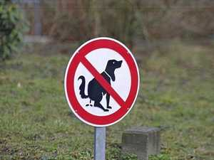 Barking mad over lazy dog owners