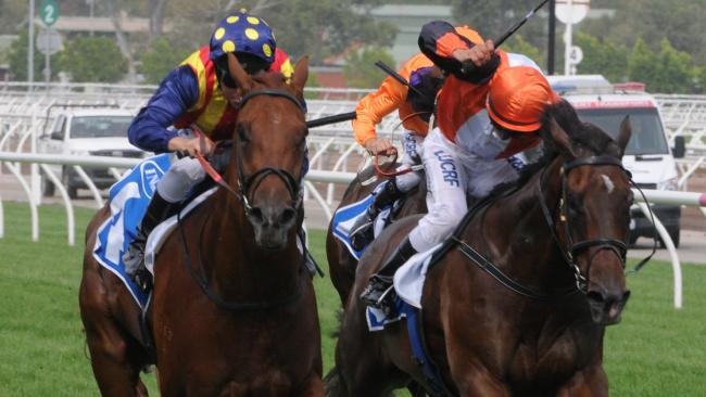Nature Strip (left) heads for victory in the Inglis Dash at Flemington in January. Picture: AAP