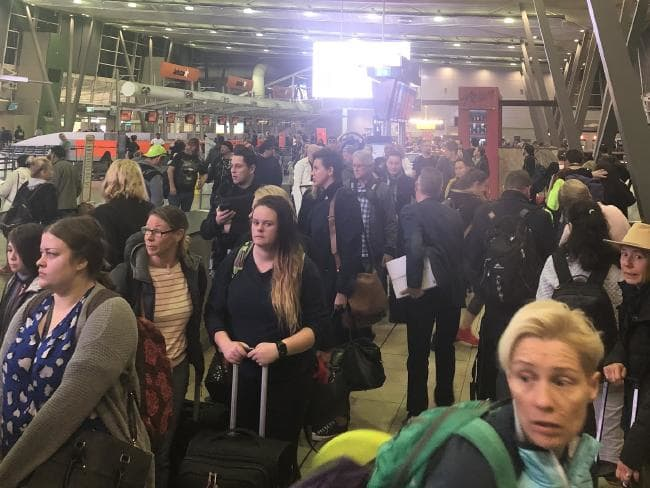 Stranded... Chaos at Sydney Airport this morning. Picture: Supplied