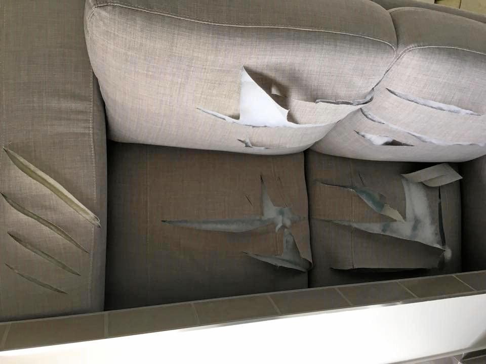 VANDALISED PROPERTIES: A slashed couch.