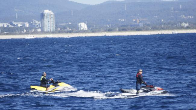 Jet skis come close to humpback whales off the Gold Coast. Pic: Whales in Paradise.