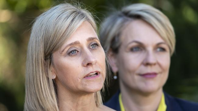 Labor Candidate for the seat of Longman Susan Lamb, with Deputy Leader of the Opposition Tanya Plibersek, faces an uphill battle to win back the seat. Picture; AAP /Glenn Hunt