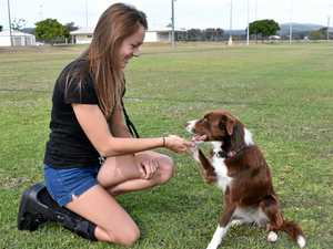 Lockyer's first off-leash dog park ready to open