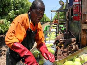 Information sessions to focus on reliable farm workers