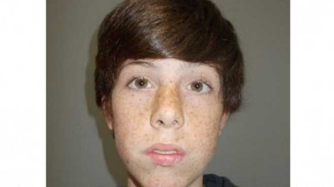 A boy has been reported missing from Redbank Plains.