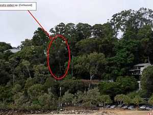 Trees to be protected under lift application