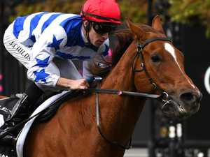 Redkirk Warrior to fly Aussie flag at Newmarket