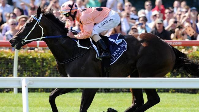 Black Caviar wins the 2013 Lightning Stakes. Picture: Michael Dodge