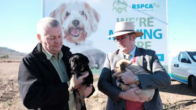 $4.8 million grant to make RSPCA's Toowoomba dream come true