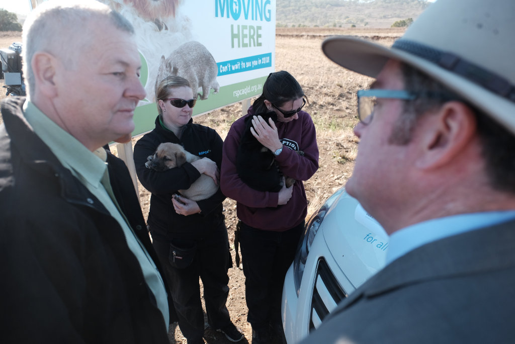 RSPCA Queensland CEO Mark Townend and Minister for Regional Development, Groom MP Dr John McVeigh chat, with RSPCA Toowoomba manager Cassie Ellis and animal attendant Helen Dransfield with puppies Nero and Hero. Federal Government funding announcement 16/07/18