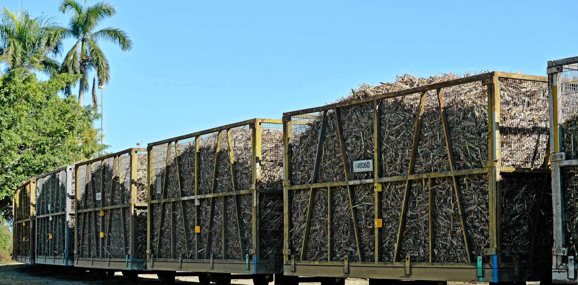 Full cane train bins at the Pleystowe Mill