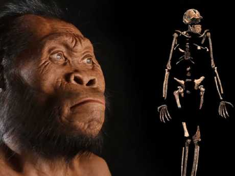 At some point before Homo sapiens emerged from Africa, earlier tribes of hominims had already settled - and begun evolving separately - throughout Eurasia. Pictur: National Geographic