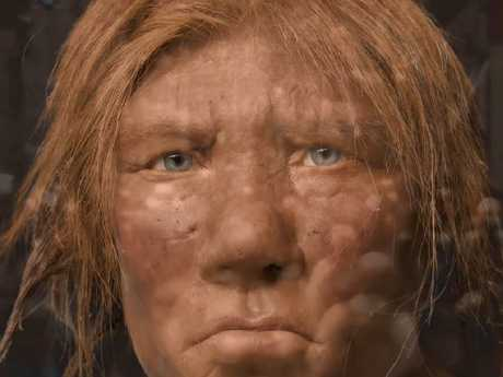 Researchers have determined that much of human DNA comes from Neanderthals, and at least two other hominid species. Picture: National Geographic